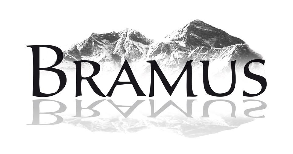 Bramus Schmidt